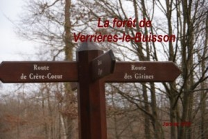 2012-01-22 Verrieres le Buisson