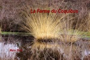 2013-03-29 La Ferme du Coquibus