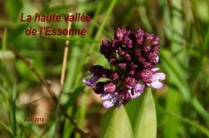 2014-04-18 La haute vallée de l'Essonne