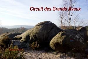 2014-12-07 Les Grands Avaux
