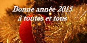 Read more about the article Bonne Année 2015