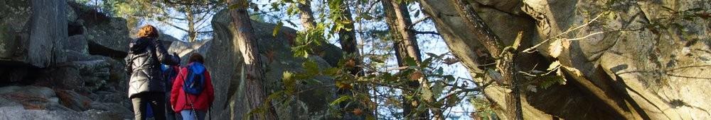2016-10-09 Les gorges d_Apremont 0025